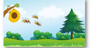 World Bee Day: Awareness, Importance And Educate People