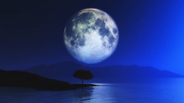 Moon Day Our Favorite Planet We Talk To