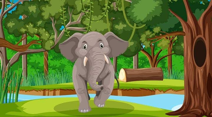 World Elephant Day: Elephant Conservation and Awareness Day